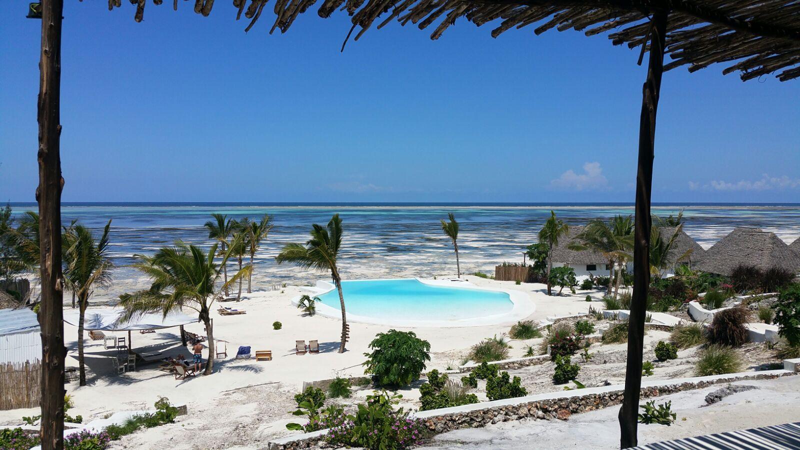 Qué podemos hacer en Zanzibar, excursiones y visitas