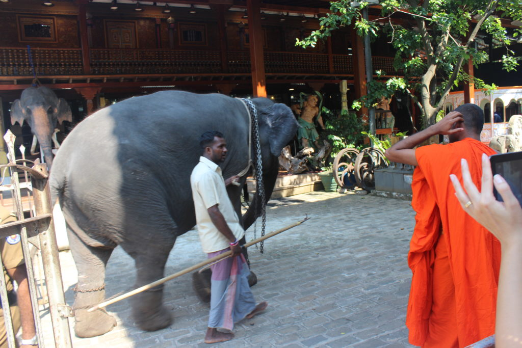 colombo-templo-budista