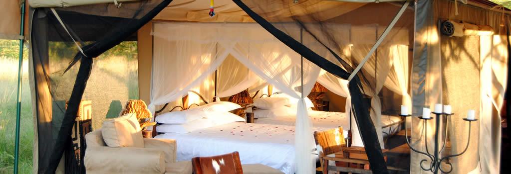 TANZANIA SERENGETI BUSCH CAMP