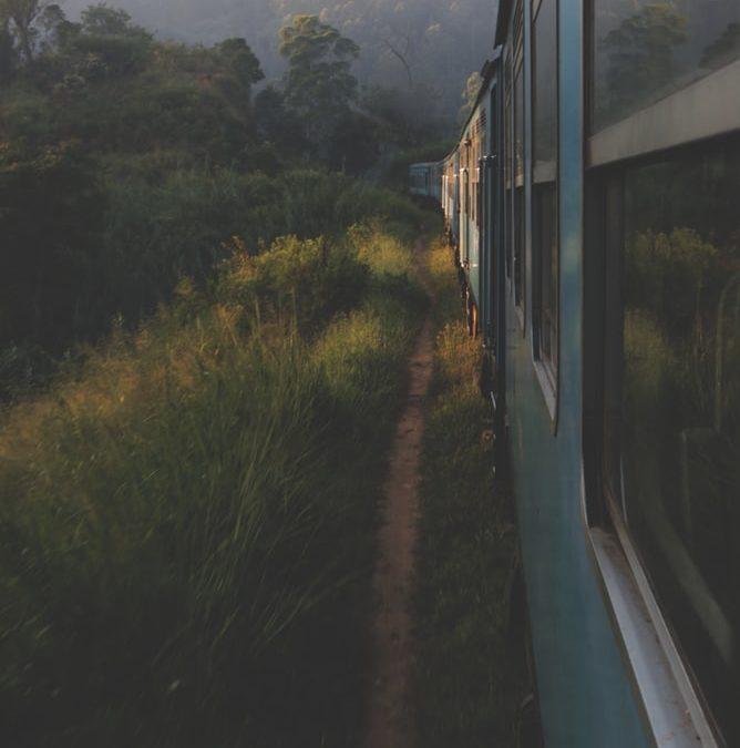 Sri Lanka, al completo.
